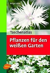 Taschenatlas Pflanzen für den weissen Garten