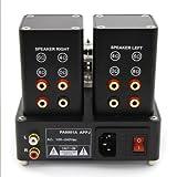 APPJ PA0901A 6N4+6P14 Mini tube Amplifier Black