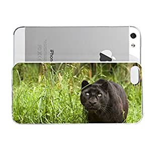 Animal - Black Panther In The Grass for iPhone 5/5s Case - Designed Specifically for iPhone 5/5S case with a Slim Design