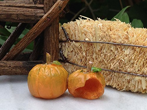 Miniature Dollhouse Fairy Garden Open Halloween Pumpkin Duo -