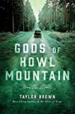 Image of Gods of Howl Mountain: A Novel