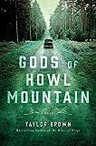 Image of Gods of Howl Mountain: A Novel