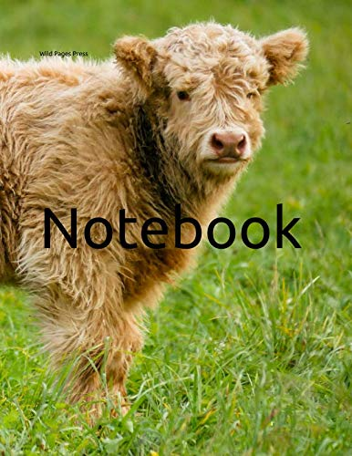 - Notebook: cow highland beef Scotland cattle meadow farming farm animal rodeo husbandry farmer