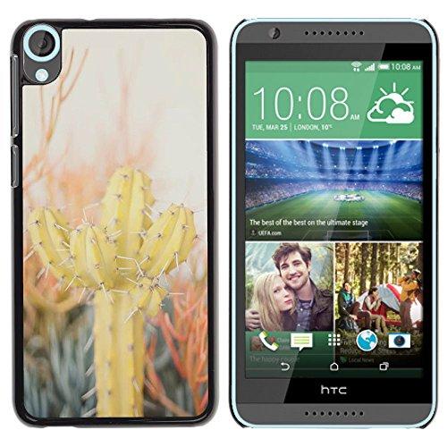 Stuss Case / Hard Protective Case Cover - Cactus Desert Sun Thorns Plants Nature - HTC Desire 820