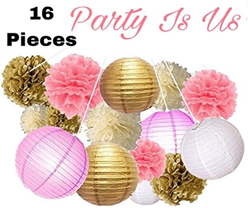 16-Pcs-Party-Supplies-Decorations-Tissue-Paper-Pom-Poms-Flowers-Paper-Lanterns-Paper-Garland-for-Wedding-Party-Decorations-Baby-Showers-Graduation-Engagement-party-Decoration-By-Party-Is-Us