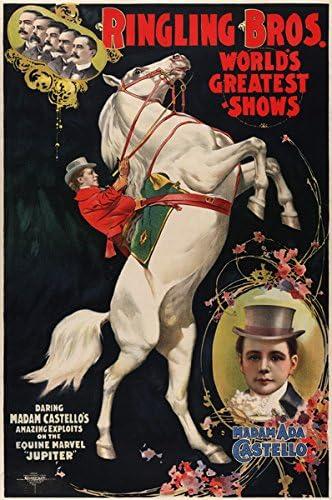"Vintage Circus Poster 13x19/"" Photo Print"