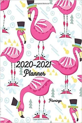 Amazon.com: 2020-2021 Planner Flamingo: 6x9 Pocket / Medium ...