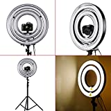 """Neewer® 1000W Camera Photo/ Video Dimmable Ring Flash Light Kit, Includes (1) 18"""" Outer 14"""" Inner 600W 5500K Dimmable Ring Fluorescent Flash Light + (1) 14"""" Outer 10"""" Inner 400W 5500K Dimmable Ring Fluorescent Flash Light + (1) PRO 9 Feet / 260cm Heavy Duty Aluminum Alloy Photography Photo Studio Light Stands+ (1) Macro Ring Flash Light Accessories Kit"""