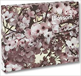 Blossom: Amazon.de: Thomas Demand, Ben Lerner ...