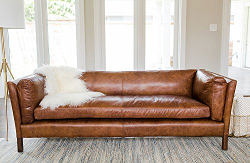 Edloe Finch Modern Leather Sofa - Mid Century Modern Couch - Top ...