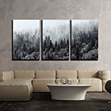 "wall26-3 Piece Canvas Wall Art - Misty Forests of Evergreen Coniferous Trees in an Ethereal Landscape - Modern Home Decor Stretched and Framed Ready to Hang - 24""x36""x3 Panels"