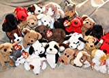 Ty Beanie Babies Lot of 20 Assorted Dogs (6-7 inches) Including Bernie, Bruno, Bones and more - Great for Party Favors and Gifts