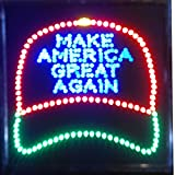19x19 LED Neon Sign Lighting by Tripact Inc - Single Switch: Power for Business Identification - America Cap