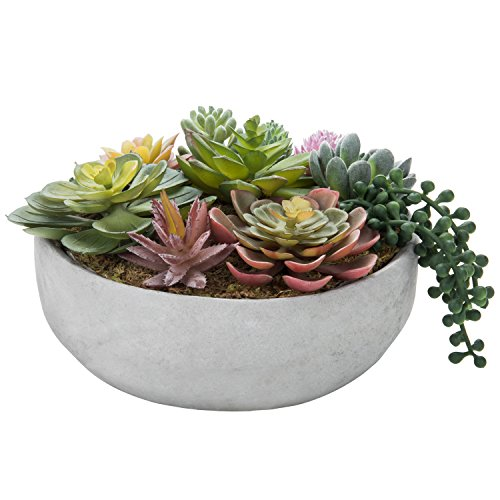 - MyGift 8-Inch Artificial Succulent Plant Arrangement in Concrete Pot