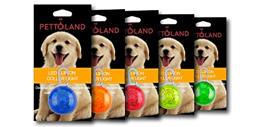 Petto Land Dog Collar Light