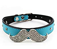 CocoPet Luxury Handmade PU Leather Pet Cat Collar Breakaway Skull Blue Bow Tie Collar Necklace Jewelry for Small Doggie Pets Female Puppies Chihuahua Yorkie Girl Costume Blue (XS)