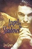 Angel in the Shadows, Book 1: # 1  (Angel Series) (The Angel Series)