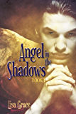 Angel in the Shadows, Book 1: # 1  (Angel Series) (The Angel Series)