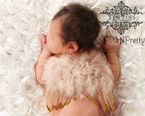 Feather Natural Angel Butterfly Wings, Newborn, Baby, Photo prop CHOOSE Colors or GLITTER TAN + Bonus PoshNPretty Clip