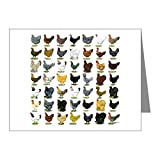 CafePress - 49 Hen Breeds - Blank Note Cards (Pk of 10) Matte