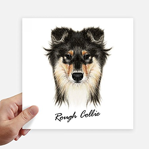 Long-haired Rough Collie Pet Animal Square Stickers 20cm Wall Suitcase Laptop Motobike Decal 4pcs (Collie Haired Rough)
