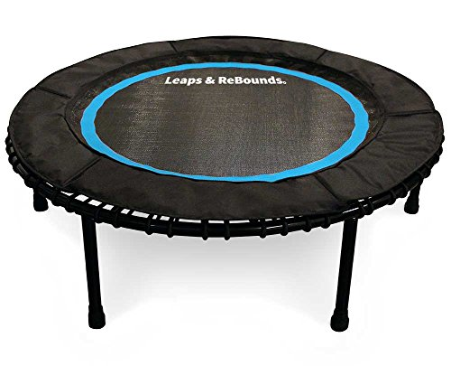 Leaps & Rebounds Bungee Rebounder - The Fun Fitness Rebounder Trampoline - Steel Frame, 32 Latex Rubber Bungees, Zero Stretch Jump Mat - Named Best Value Rebounder - 6 Colors, 2 SIzes, 1 Year Warranty