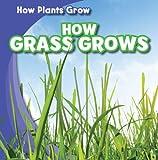 Watch Grass Grow, Kristen Rajczak, 1433948281