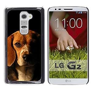 Vortex Accessory Carcasa Funda PARA LG G2 For - Beagle Labrador Retriever Dog Puppy