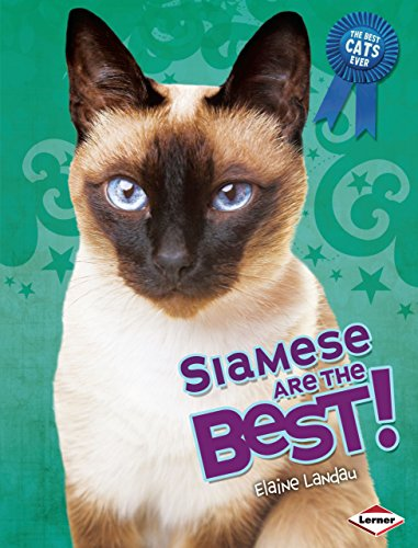 Siamese Are the Best! (The Best Cats Ever) - Landau Chocolate