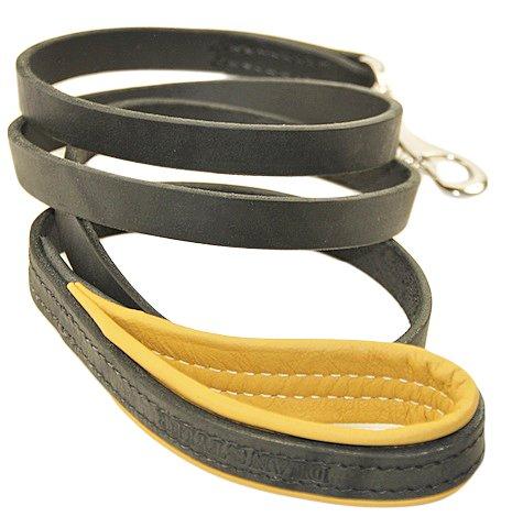 dean and tyler black leash - 3