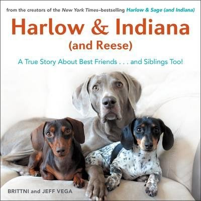 Read Online Harlow & Indiana (and Reese) : A True Story About Best Friends... and Siblings Too!(Hardback) - 2015 Edition pdf epub