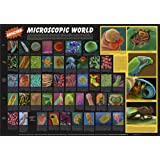 "American Educational Electron Micrographs Amazing Microscopic World Poster, 36"" Length X 26"" Height"