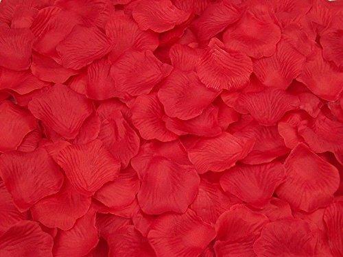 Zestiria Costumes (1000pcs Multi Colors Silk Flower Rose Artificial Petals Wedding Decorations (Red))