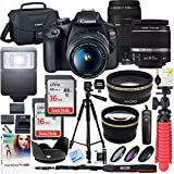 Canon T7 EOS Rebel DSLR Camera with EF-S 18-55mm f/3.5-5.6 is II and EF 75-300mm f/4-5.6 III Lens and SanDisk Memory Cards 16GB 2 Pack Plus Double Battery Accessory Bundle