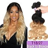 """Ombre Brazilian Hair Body Wave Bundles 3pcs, Ombre Brazilian Virgin Hair Human Hair Weave Two Tone Black to Blonde (T1B/27,10"""" 12"""" 14"""")"""