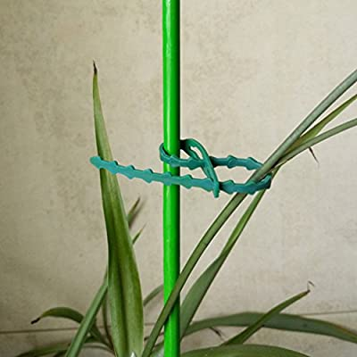 SimpleLif Garden Plastic Plant Cable Tied Adjustable Tree Climbing Support Supplies Green 17.5cm/6.89