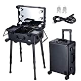 AW Large Rolling Makeup Case w LED Light Mirror Adjustable Legs Lockable Train Table Studio Artist Cosmetic 12x8x20'