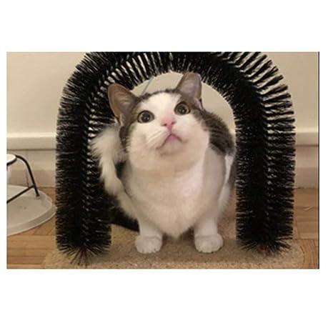 XD7 Arco de Gato masajeador masajeador para el Novio Juguete ...