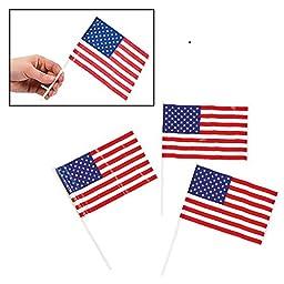Patriotic Plastic American 6\