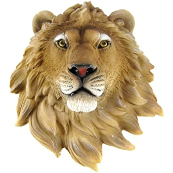 Amazon Com African Lion Head Mount Wall Statue Bust Leo