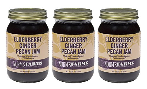 (Norm's Farms Delicious and Flavorful Black Elderberry Ginger Pecan Jam, 9 Ounce Jar, Pack of 3)