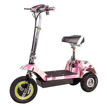 XPZ00 Delfín Eléctrico Triciclo Portátil Mini Plegable Masculino Y Femenino Bicicleta Coche De Batería para Adultos: Amazon.es: Deportes y aire libre
