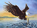 DIY Diamond Painting Eagle Diamonds Embroidery Mosaic Rhinestones Pictures Handicraft