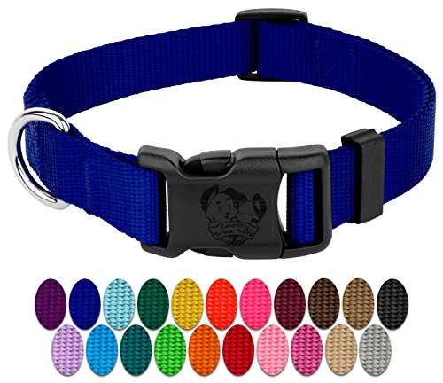 Country Brook Petz | Vibrant 21 Color Selection | Deluxe Nylon Dog Collar (Royal Blue, Medium, 3/4 Inch Wide)