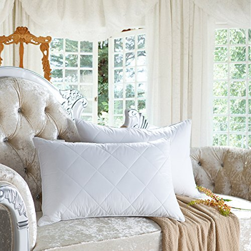 Set of 2 Goose Feather Pillows Queen Size - 600 Thread Count Cotton Cover,20