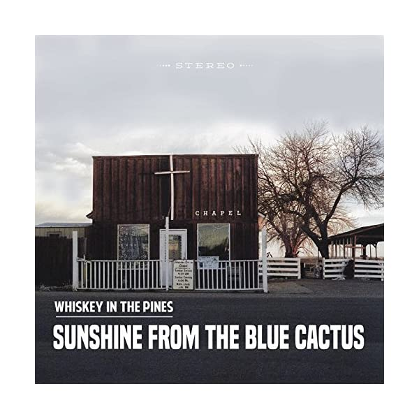 Sunshine-from-the-Blue-Cactus