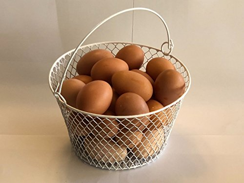 Wire Chicken Egg Basket. for Gathering Eggs .Poultry. Round.White.