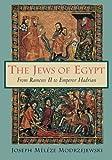 img - for The Jews of Egypt by Joseph Meleze Modrzejewski (1997-10-27) book / textbook / text book