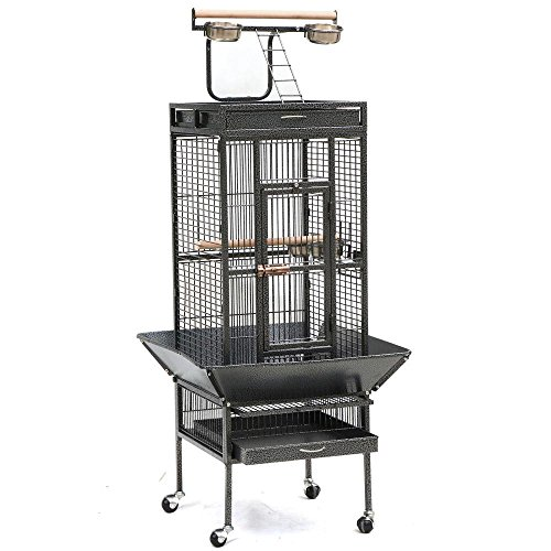 go2buy Wrought Iron Select Bird Cage Parrot Cockatoo Birdcage Stands (61-Inch Black) by Go2buy