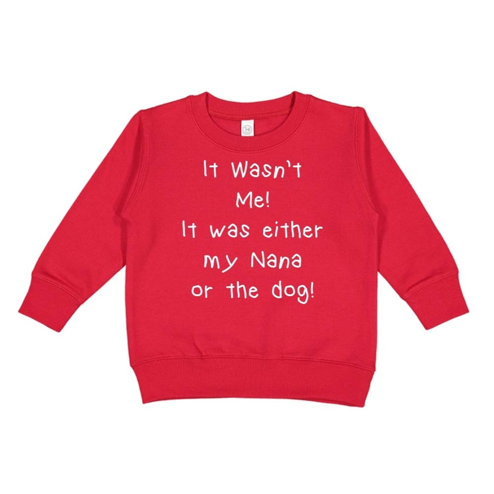 Toddler//Kids Sweatshirt It was Either My Nana Or The Dog It Wasnt Me